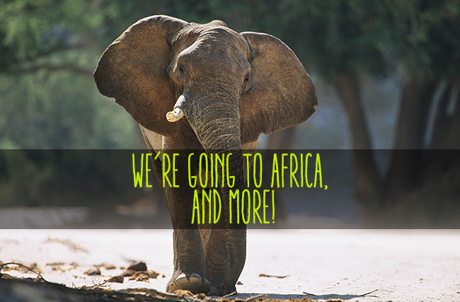 We're going to Africa and more