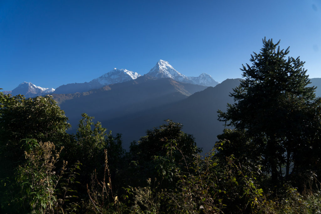 Ghorepani to Poon Hill to Tadapani with Kids