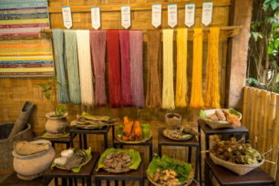 Best Things to do in Luang Prabang with Kids