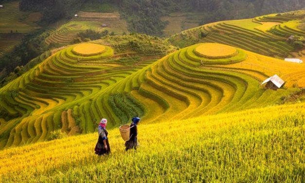 How To Spend 2 Weeks In Vietnam