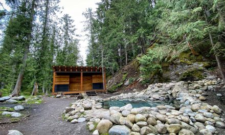 Halfway Hot Springs BC – Take A Dip On The Wild Side